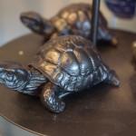 Turtle spirit animals